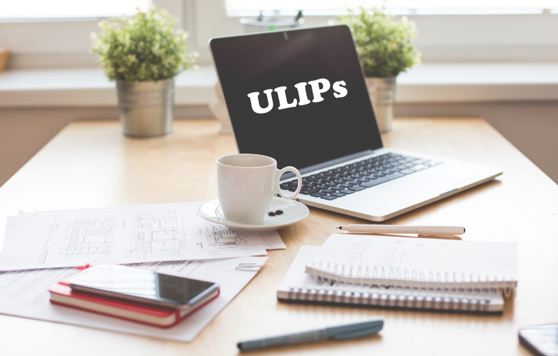 How ULIPs Work and Things to Know Before Investing in One